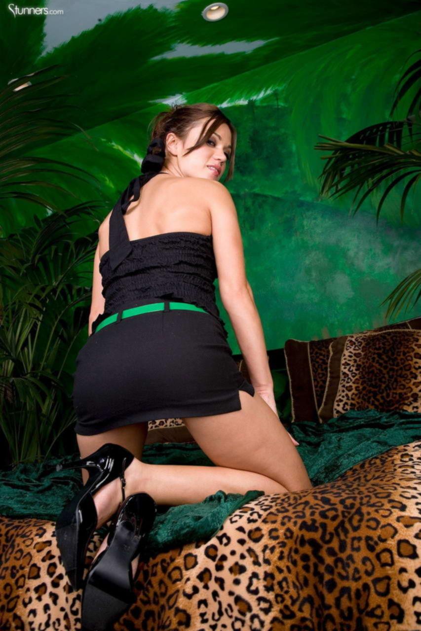 Страстный гепард